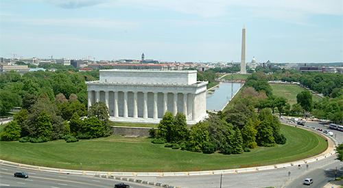 Washington DC Lawn